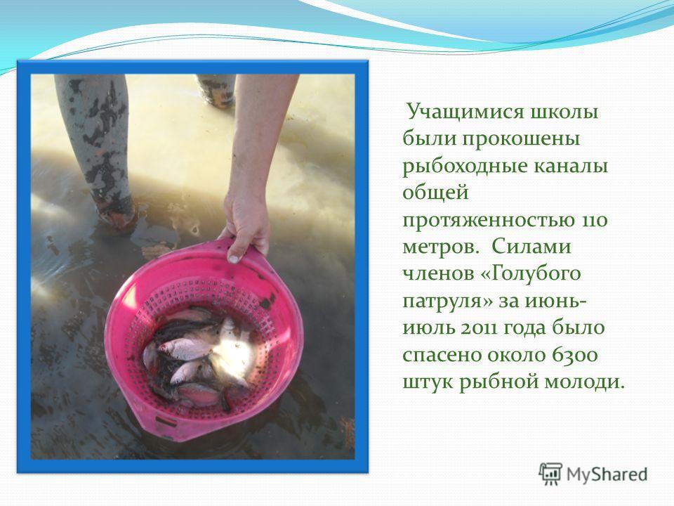Учащимися школы были прокошены рыбоходные каналы общей протяженностью 110 метров. Силами членов «Голубого патруля» за июнь- июль 2011 года было спасено около 6300 штук рыбной молоди.