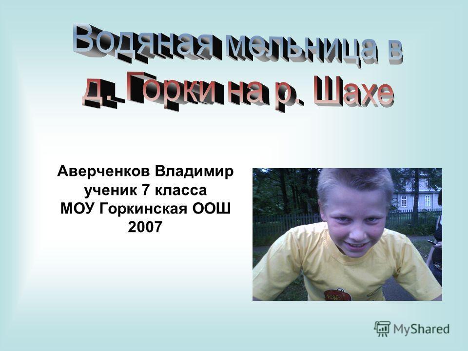 Аверченков Владимир ученик 7 класса МОУ Горкинская ООШ 2007