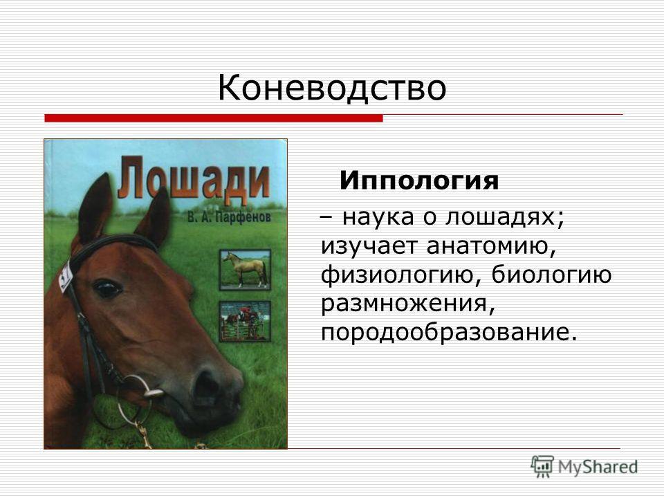 Коневодство – наука о лошадях; изучает анатомию, физиологию, биологию размножения, породообразование. Иппология