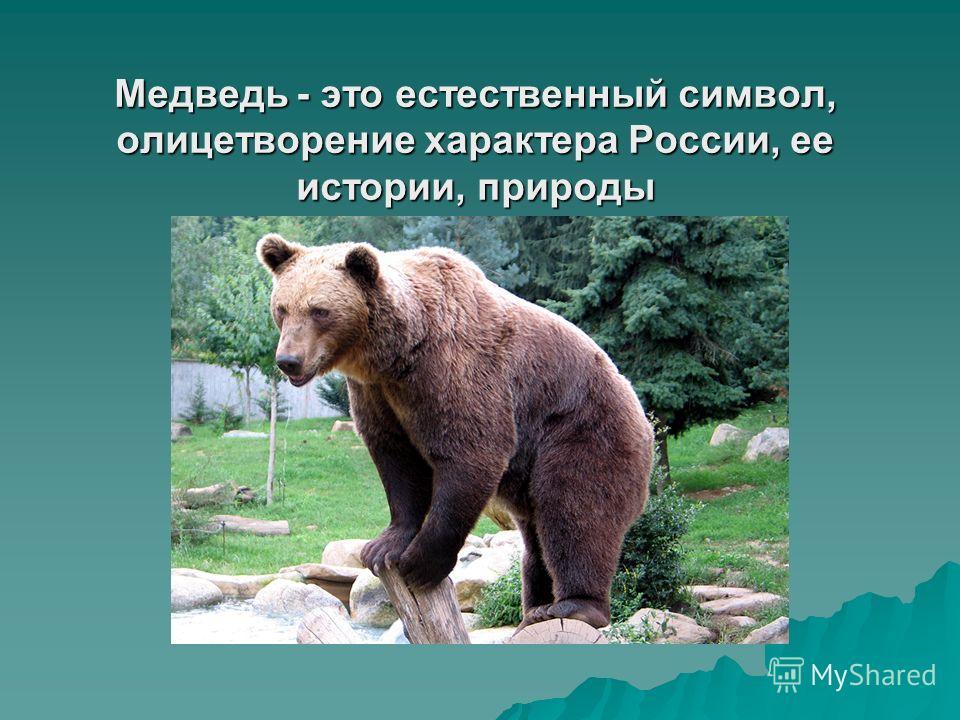 Медведь - это естественный символ, олицетворение характера России, ее истории, природы