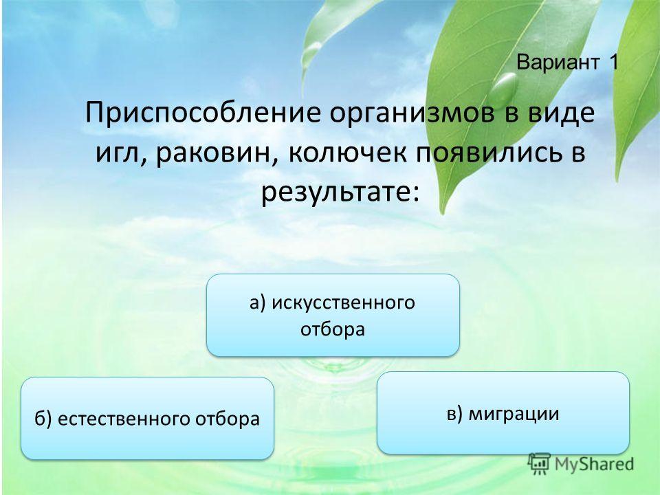 Вариант 1 Приспособление организмов в виде игл, раковин, колючек появились в результате: б) естественного отбора а) искусственного отбора а) искусственного отбора в) миграции