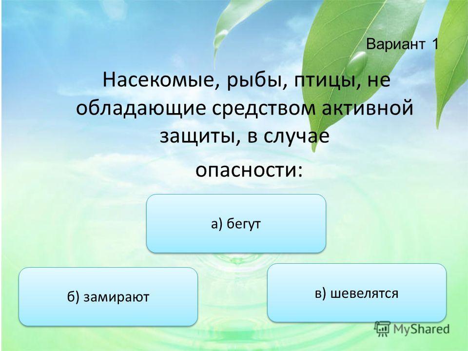 Вариант 1 Насекомые, рыбы, птицы, не обладающие средством активной защиты, в случае опасности: б) замирают а) бегут в) шевелятся