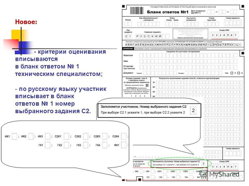 Новое: - критерии оценивания вписываются в бланк ответом 1 техническим специалистом; - по русскому языку участник вписывает в бланк ответов 1 номер выбранного задания С2.