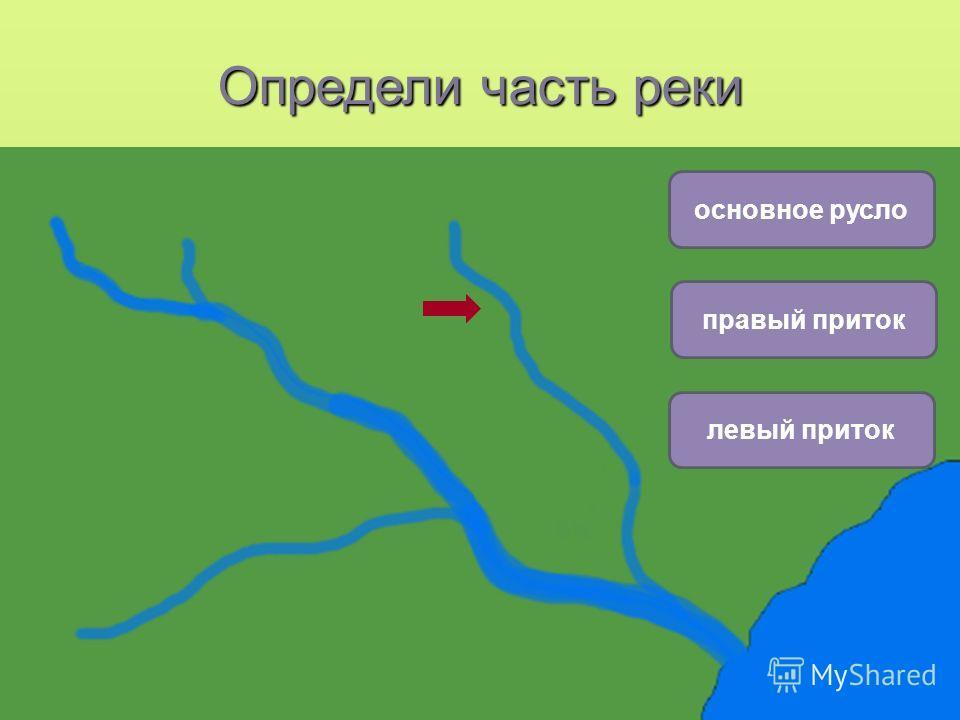плоская равнина горы холмистая равнина основное русло левый приток правый приток Определи часть реки