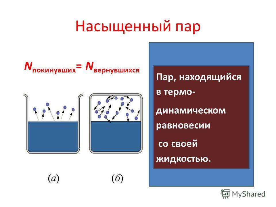 Насыщенный пар N покинувших = N вернувшихся Пар, находящийся в термо- динамическом равновесии со своей жидкостью.