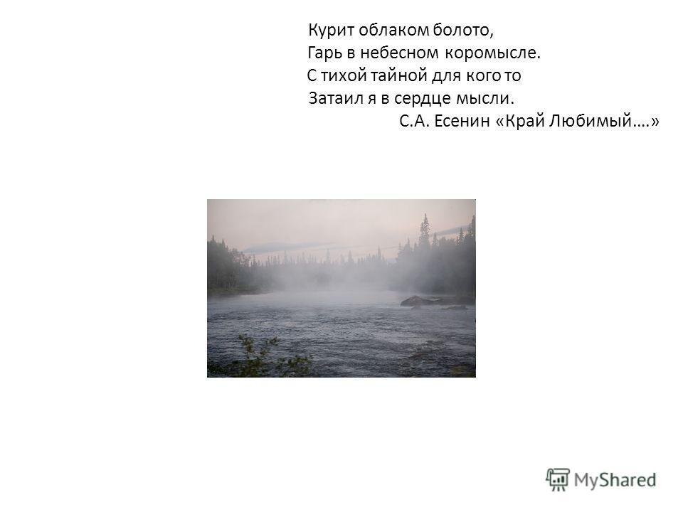 Курит облаком болото, Гарь в небесном коромысле. С тихой тайной для кого то Затаил я в сердце мысли. С.А. Есенин «Край Любимый….»