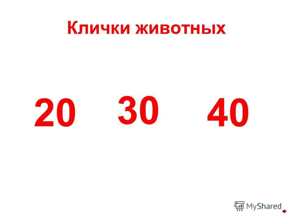 Клички животных 30 2040