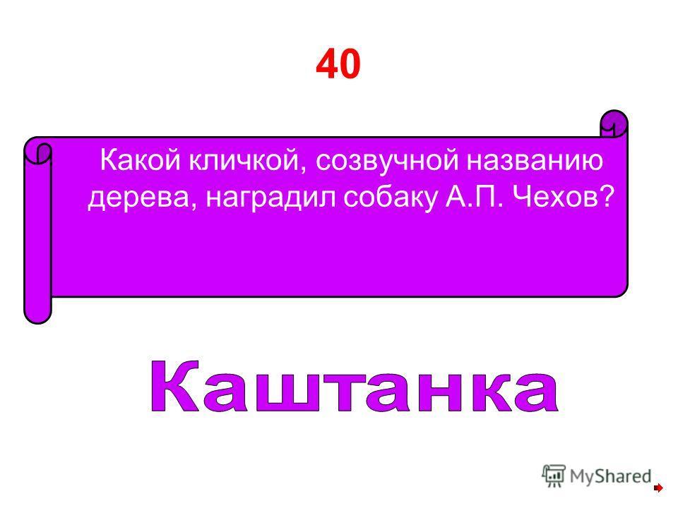 40 Какой кличкой, созвучной названию дерева, наградил собаку А.П. Чехов?