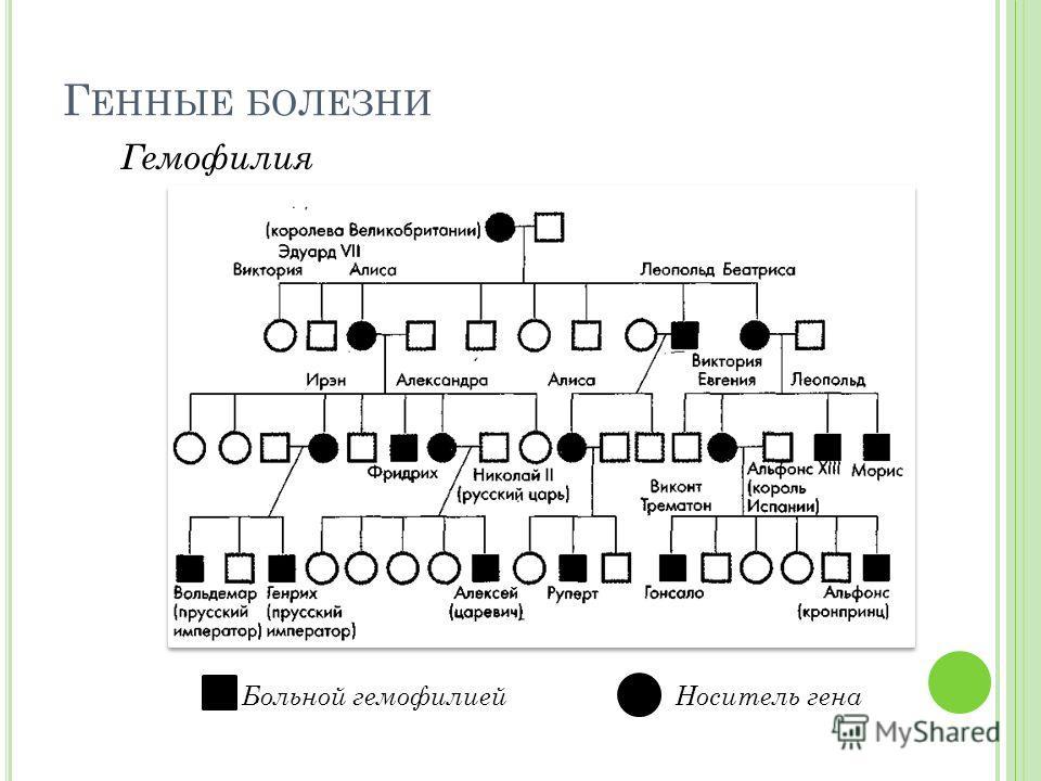 Г ЕННЫЕ БОЛЕЗНИ Гемофилия Больной гемофилиейНоситель гена