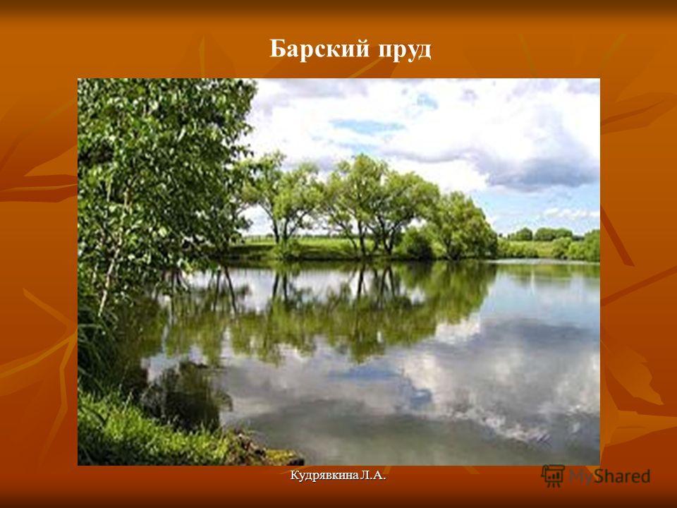 Кудрявкина Л.А. Барский пруд