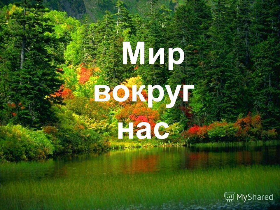Мир вокруг нас