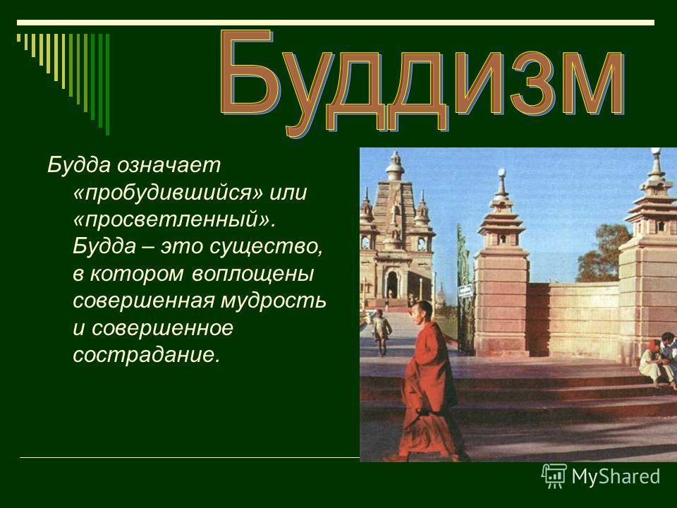 Будда означает «пробудившийся» или «просветленный». Будда – это существо, в котором воплощены совершенная мудрость и совершенное сострадание.