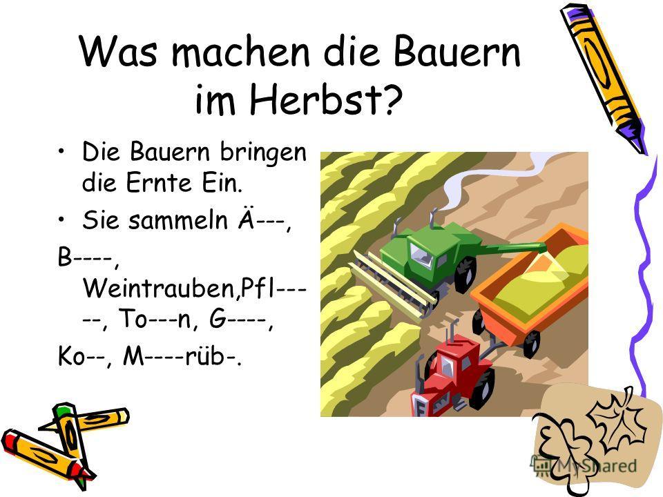 Was machen die Bauern im Herbst? Die Bauern bringen die Ernte Ein. Sie sammeln Ä---, B----, Weintrauben,Pfl--- --, To---n, G----, Ko--, M----rüb-.