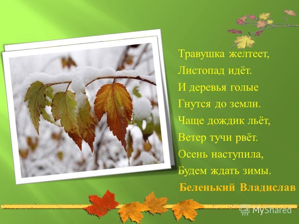 Травушка желтеет, Листопад идёт. И деревья голые Гнутся до земли. Чаще дождик льёт, Ветер тучи рвёт. Осень наступила, Будем ждать зимы. Беленький Владислав