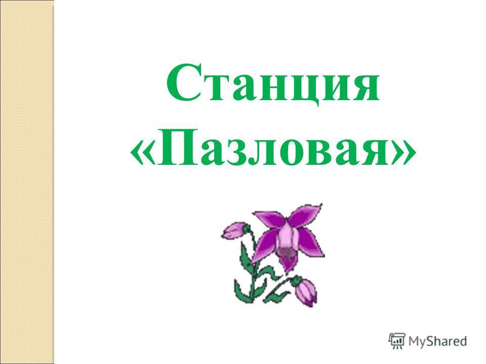 Станция «Пазловая»
