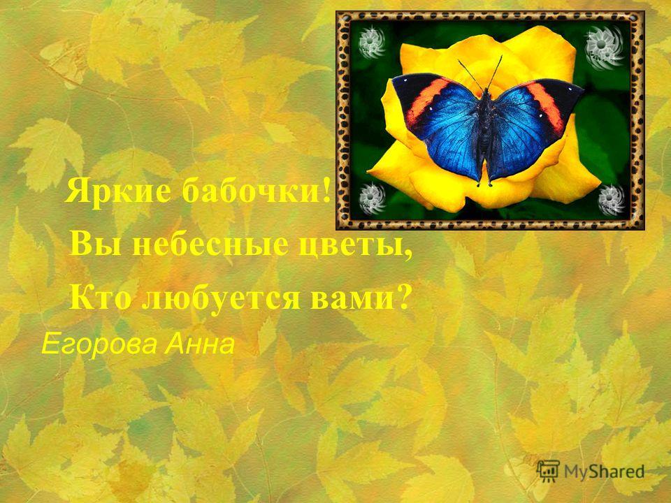 Яркие бабочки! Вы небесные цветы, Кто любуется вами? Егорова Анна