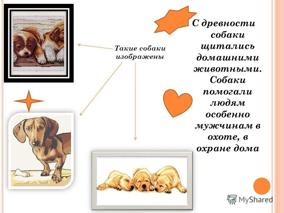 С древности собаки щитались домашними животными. Собаки помогали людям особенно мужчинам в охоте, в охране дома Такие собаки изображены