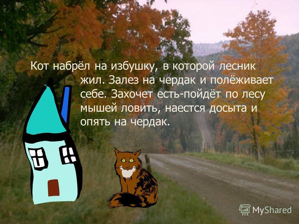 ил-был мужик, у него был кот, только такой шкодливый, что беда! Надоел он мужику. Вот мужик думал-думал, взял кота, посадил в мешок, завязал и понёс в лес. Бросил его в лесу-пускай пропадает!