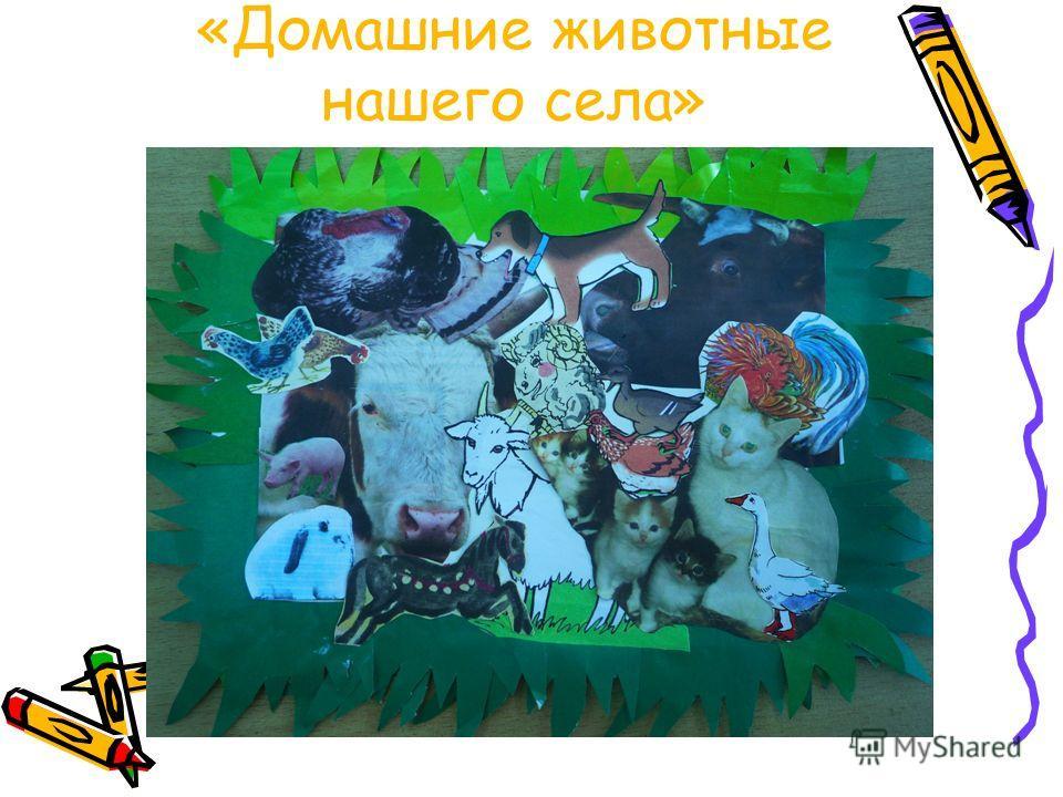 «Домашние животные нашего села»