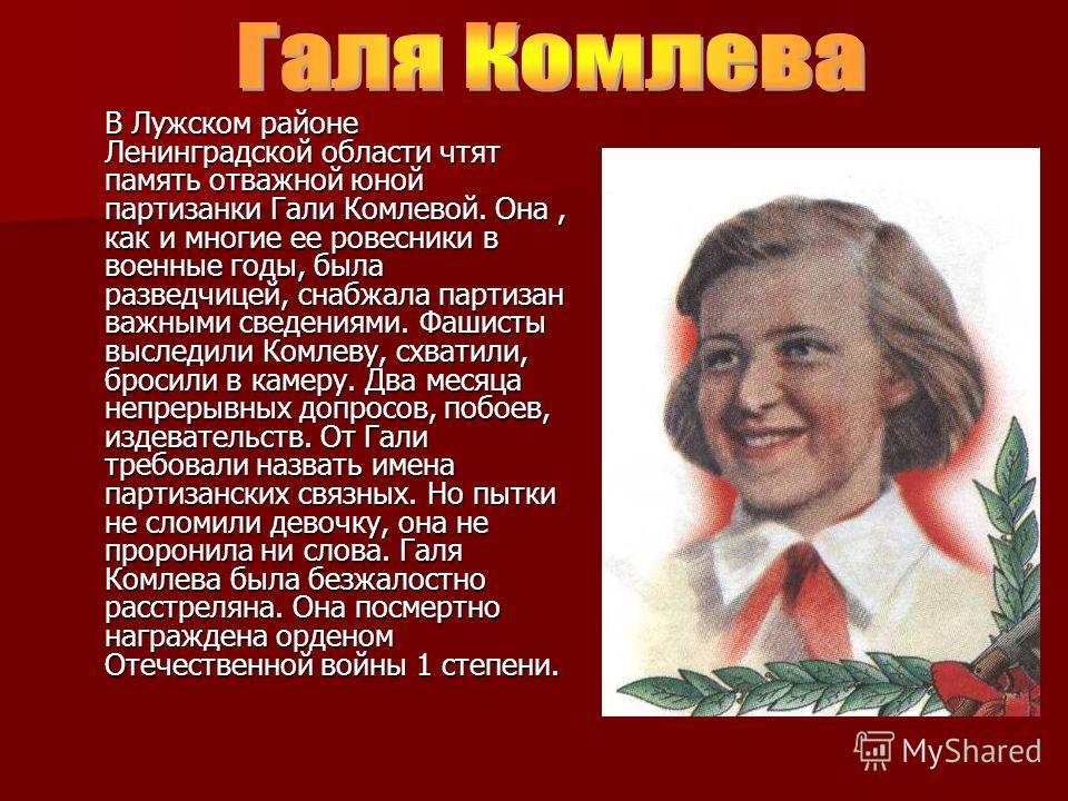В Лужском районе Ленинградской области чтят память отважной юной партизанки Гали Комлевой. Она, как и многие ее ровесники в военные годы, была разведчицей, снабжала партизан важными сведениями. Фашисты выследили Комлеву, схватили, бросили в камеру. Д
