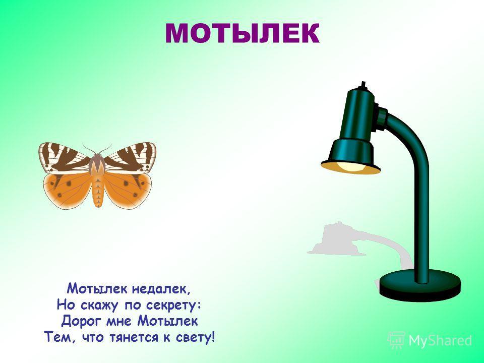 СВЕТЛЯЧОК Днем - обычный червячок, Ночью – в новой роли. Ваша Светлость, Светлячок, Вы Волшебник, что ли?!