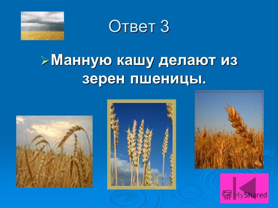Подсказка 3 Из зерен данного злака Из зерен данного злака ответ