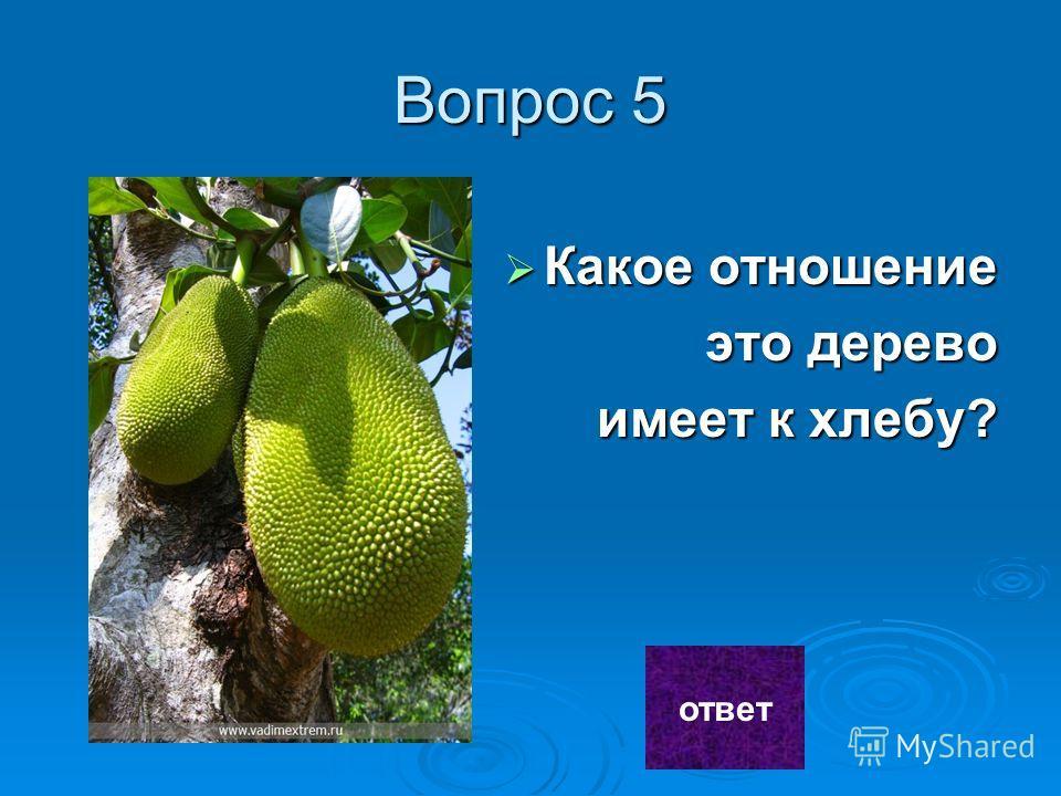 Ответ 4 2- рожь 3-овес 2- рожь 3-овес