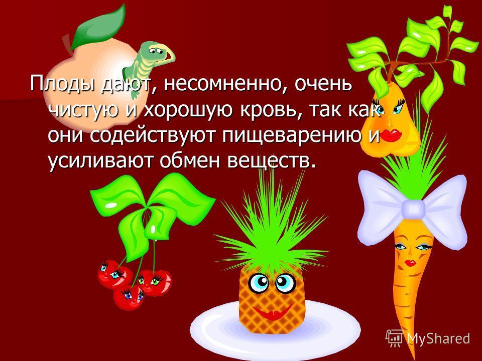 Плоды дают, несомненно, очень чистую и хорошую кровь, так как они содействуют пищеварению и усиливают обмен веществ.