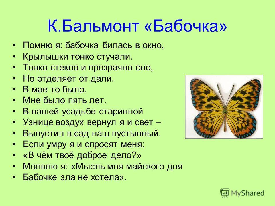 К.Бальмонт «Бабочка» Помню я: бабочка билась в окно, Крылышки тонко стучали. Тонко стекло и прозрачно оно, Но отделяет от дали. В мае то было. Мне было пять лет. В нашей усадьбе старинной Узнице воздух вернул я и свет – Выпустил в сад наш пустынный.