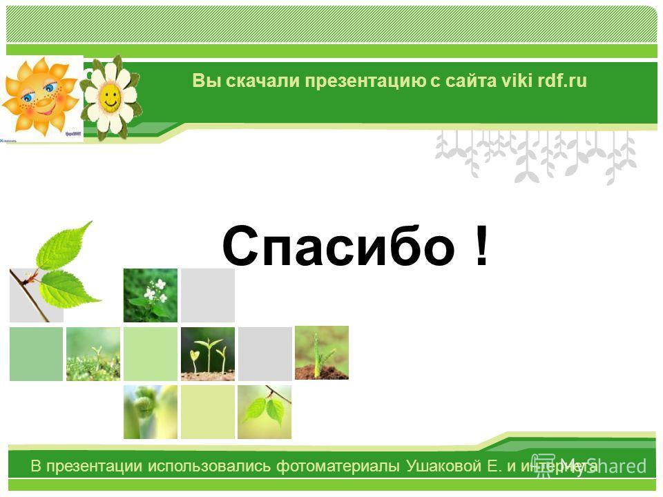 L/O/G/O Спасибо ! Вы скачали презентацию с сайта viki rdf.ru В презентации использовались фотоматериалы Ушаковой Е. и интернета