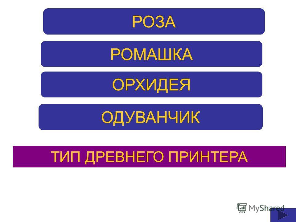 РОЗА РОМАШКА ОРХИДЕЯ ОДУВАНЧИК ТИП ДРЕВНЕГО ПРИНТЕРА
