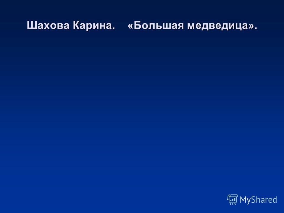 Шахова Карина. «Большая медведица».