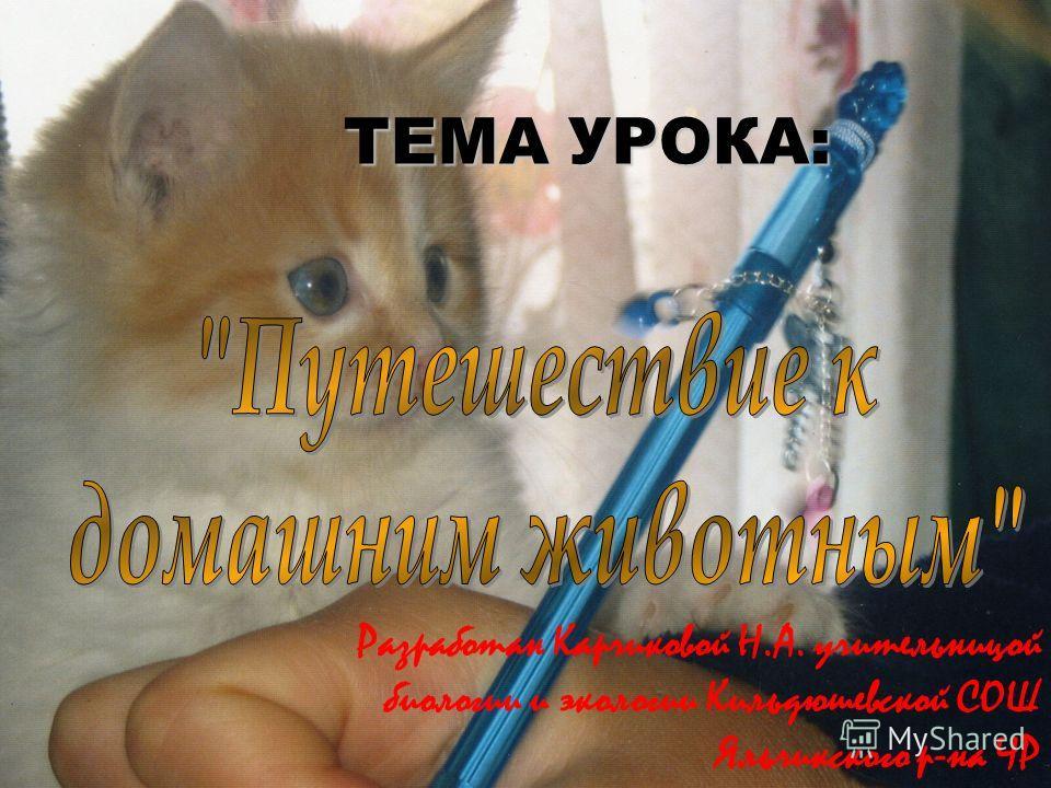 Разработан Карчиковой Н.А. учительницой биологии и экологии Кильдюшевской СОШ Яльчикского р-на ЧР ТЕМА УРОКА: