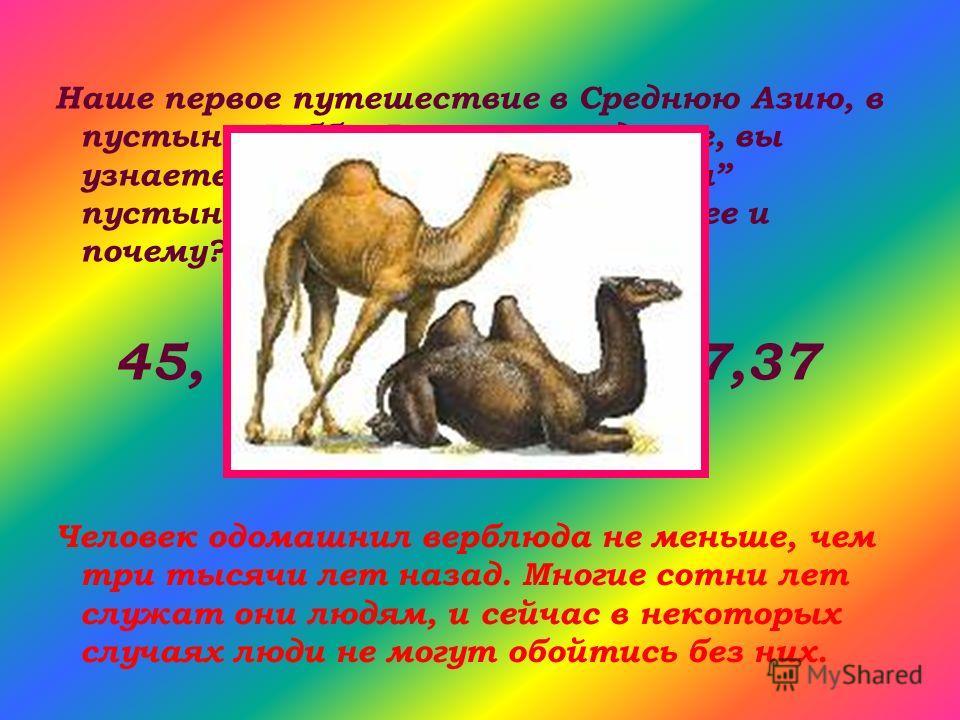 Наше первое путешествие в Среднюю Азию, в пустыню Гобби. Выполнив задание, вы узнаете кого называют кораблем пустыни. Вот числа – какое лишнее и почему? 45, 19, 9,28,40,32,27,37 Человек одомашнил верблюда не меньше, чем три тысячи лет назад. Многие с