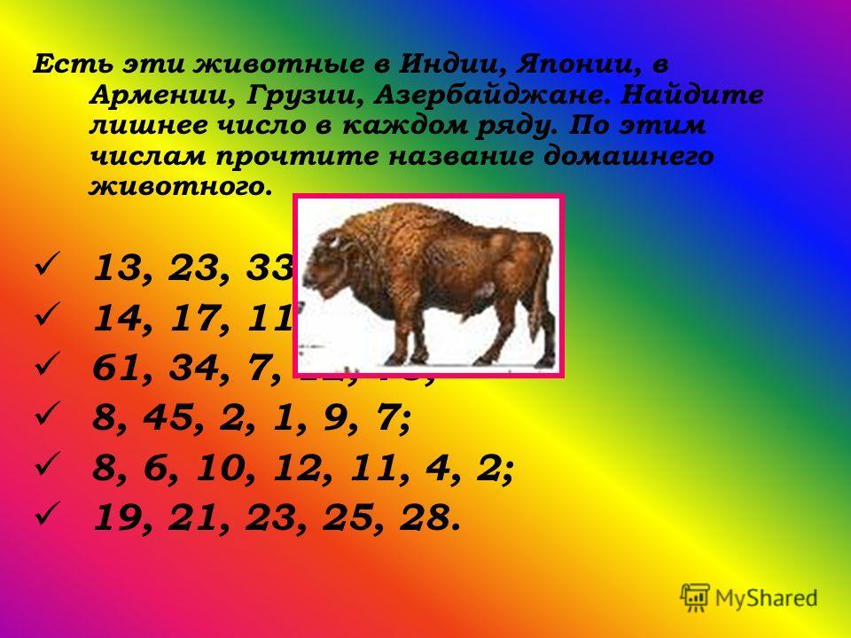Есть эти животные в Индии, Японии, в Армении, Грузии, Азербайджане. Найдите лишнее число в каждом ряду. По этим числам прочтите название домашнего животного. 13, 23, 33, 32,43, 53; 14, 17, 11, 24, 19; 61, 34, 7, 12, 78; 8, 45, 2, 1, 9, 7; 8, 6, 10, 1
