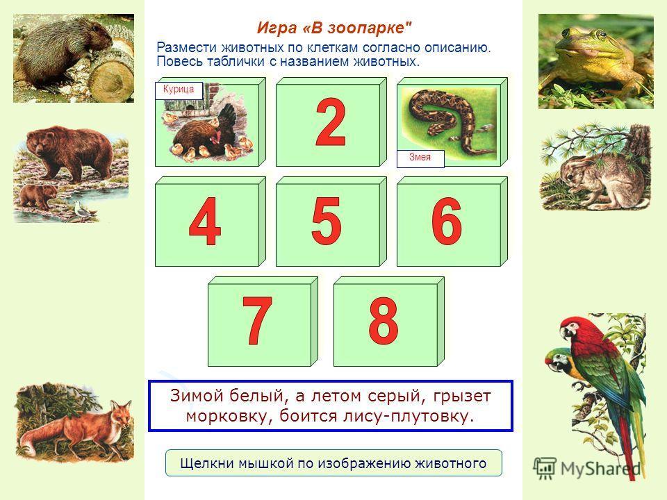 Размести животных по клеткам согласно описанию. Повесь таблички с названием животных. Игра «В зоопарке Курица Змея Щелкни мышкой по изображению животного Зимой белый, а летом серый, грызет морковку, боится лису-плутовку.