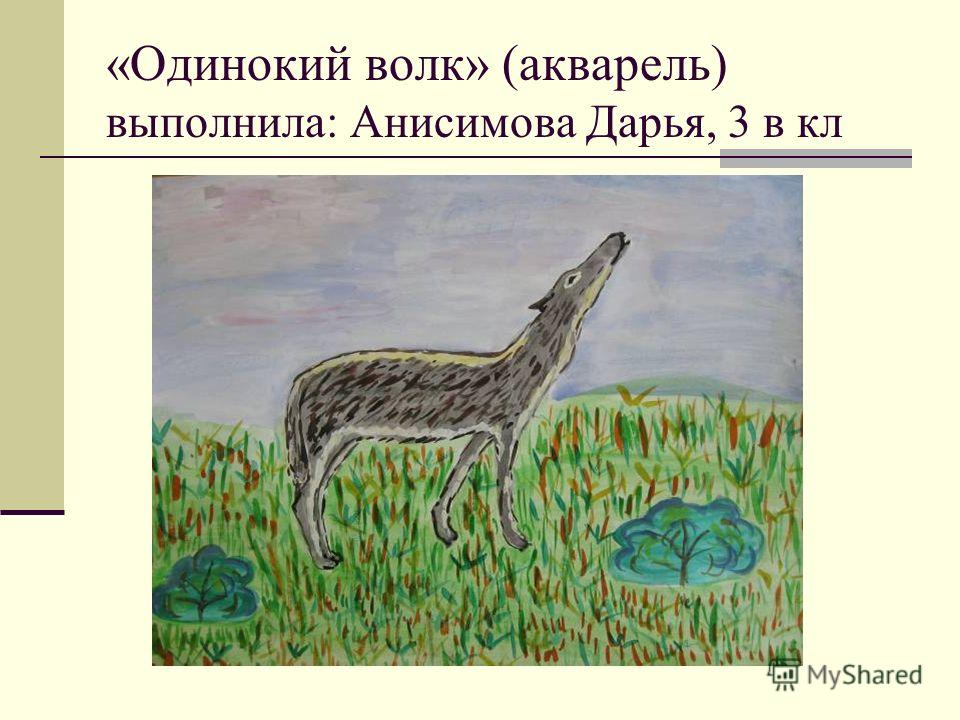 «Одинокий волк» (акварель) выполнила: Анисимова Дарья, 3 в кл