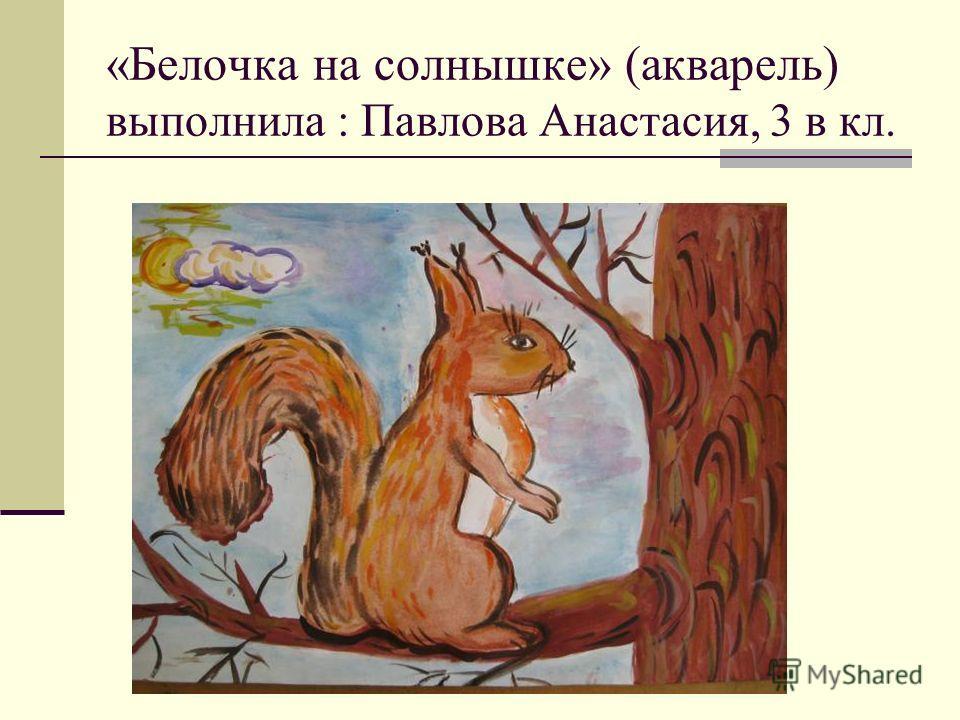 «Белочка на солнышке» (акварель) выполнила : Павлова Анастасия, 3 в кл.