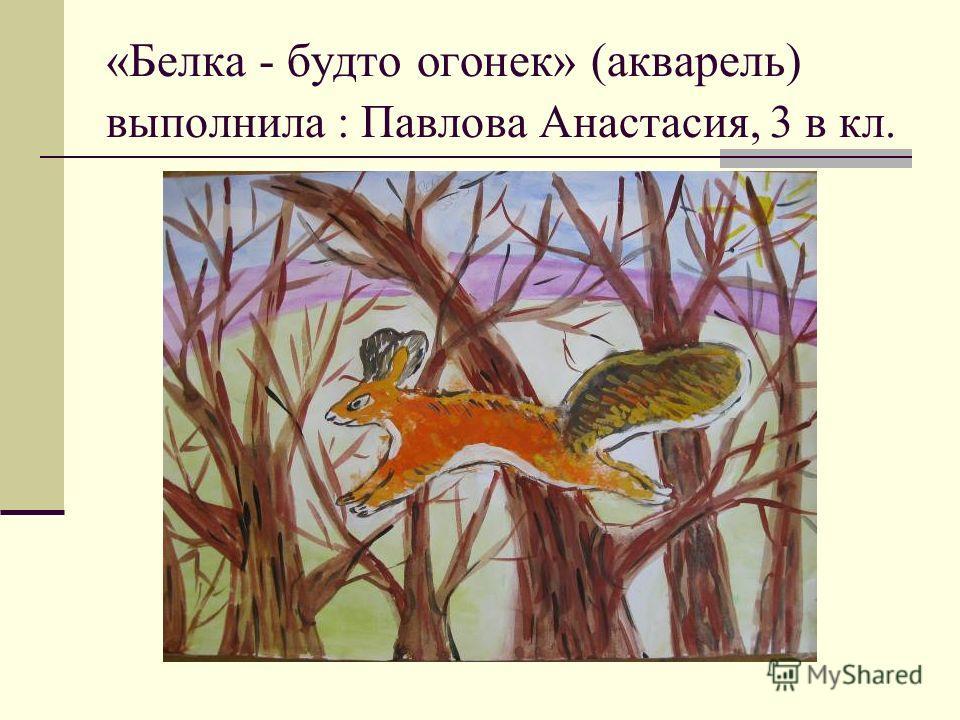 «Белка - будто огонек» (акварель) выполнила : Павлова Анастасия, 3 в кл.