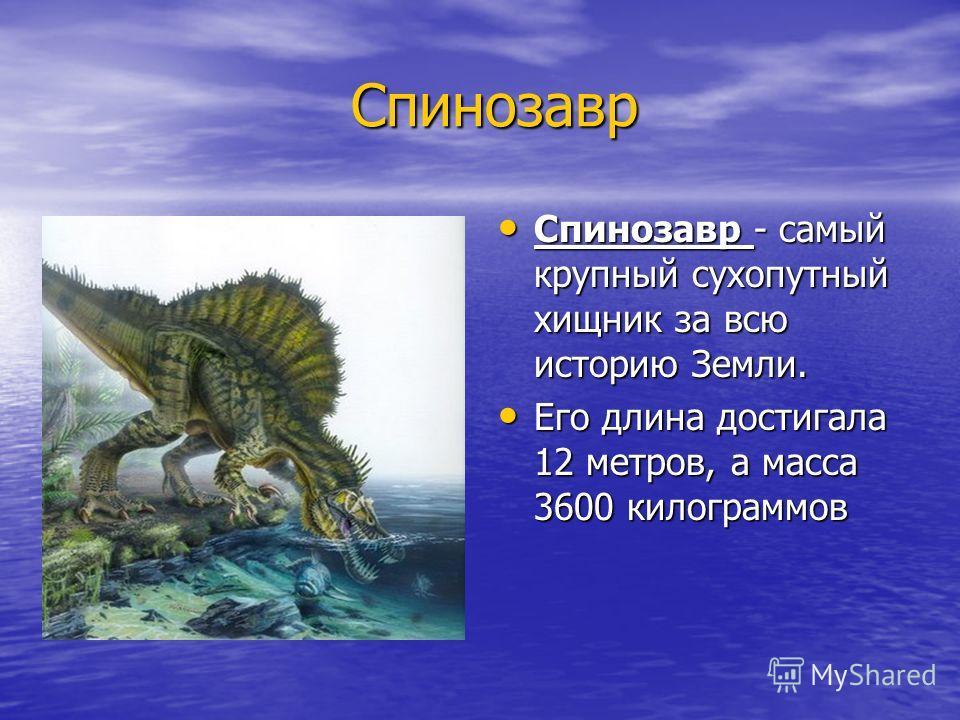 Спинозавр Спинозавр Спинозавр - самый крупный сухопутный хищник за всю историю Земли. Спинозавр - самый крупный сухопутный хищник за всю историю Земли. Его длина достигала 12 метров, а масса 3600 килограммов Его длина достигала 12 метров, а масса 360