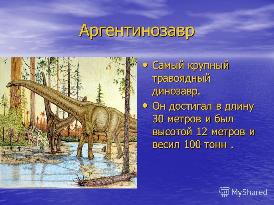 Аргентинозавр Аргентинозавр Самый крупный травоядный динозавр. Самый крупный травоядный динозавр. Он достигал в длину 30 метров и был высотой 12 метров и весил 100 тонн. Он достигал в длину 30 метров и был высотой 12 метров и весил 100 тонн.