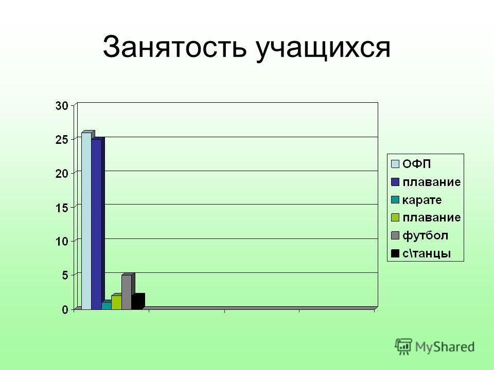 Занятость учащихся