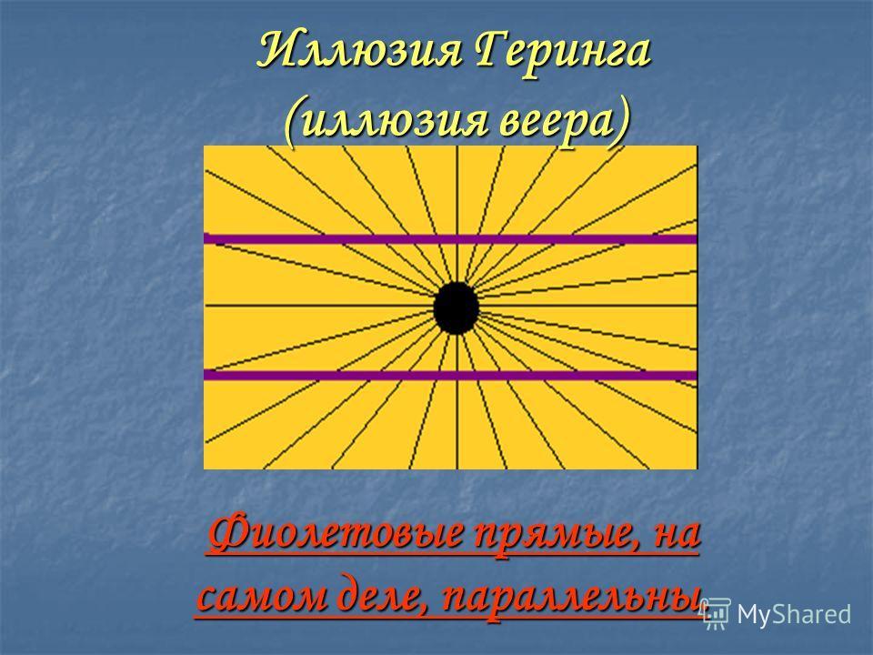Иллюзия Геринга (иллюзия веера) Фиолетовые прямые, на самом деле, параллельны.