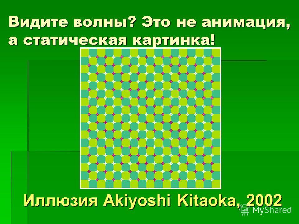 Видите волны? Это не анимация, а статическая картинка! Видите волны? Это не анимация, а статическая картинка! Иллюзия Akiyoshi Kitaoka, 2002