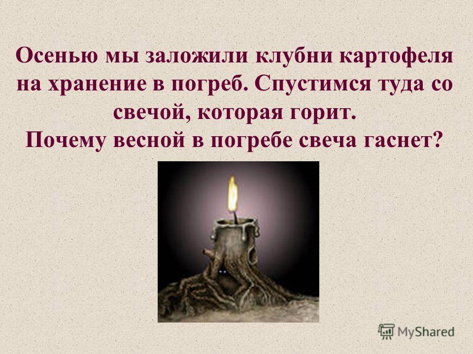 Осенью мы заложили клубни картофеля на хранение в погреб. Спустимся туда со свечой, которая горит. Почему весной в погребе свеча гаснет?