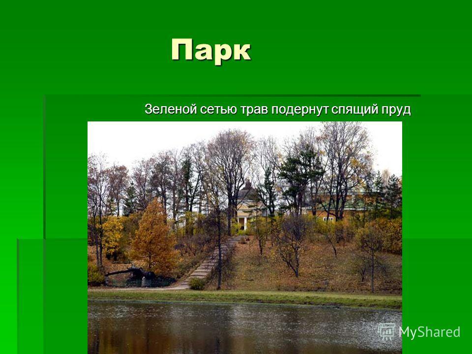 Парк Зеленой сетью трав подернут спящий пруд Зеленой сетью трав подернут спящий пруд