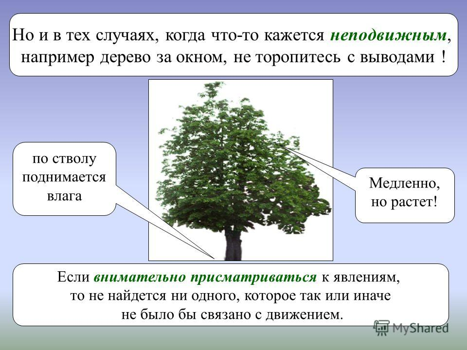Но и в тех случаях, когда что-то кажется неподвижным, например дерево за окном, не торопитесь с выводами ! Медленно, но растет! по стволу поднимается влага Если внимательно присматриваться к явлениям, то не найдется ни одного, которое так или иначе н