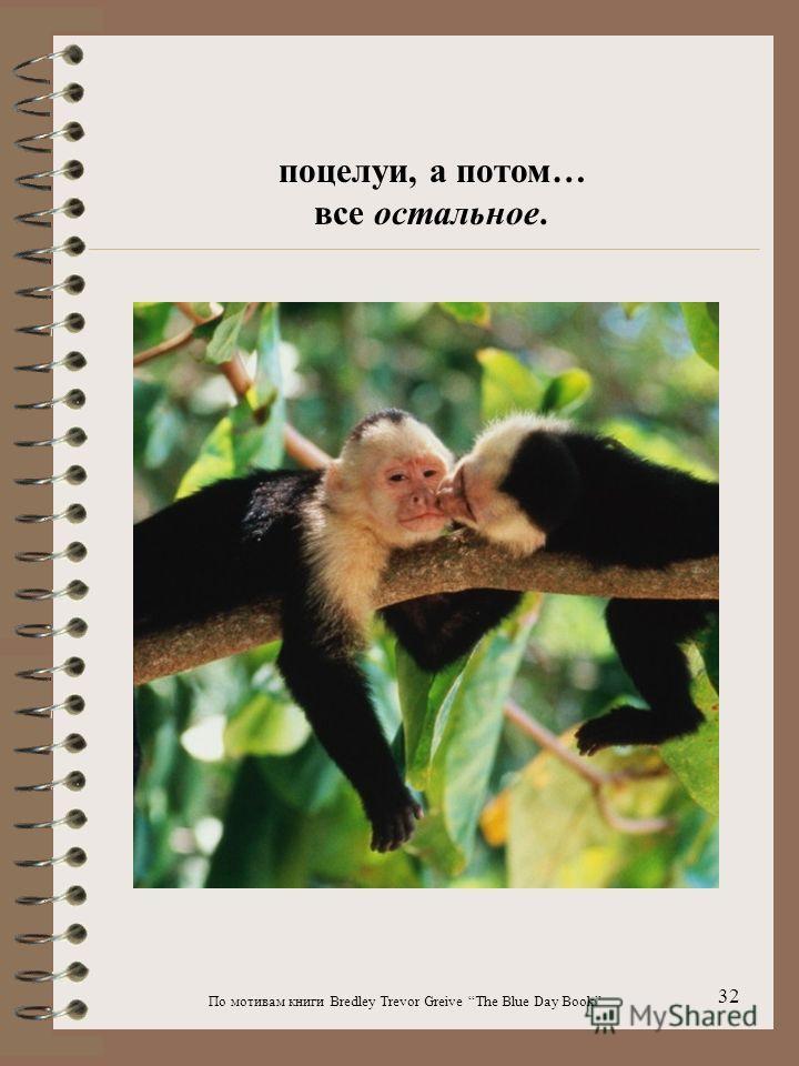 По мотивам книги Bredley Trevor Greive The Blue Day Book 32 поцелуи, а потом… все остальное.