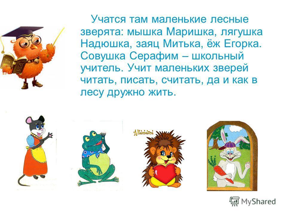 Учатся там маленькие лесные зверята: мышка Маришка, лягушка Надюшка, заяц Митька, ёж Егорка. Совушка Серафим – школьный учитель. Учит маленьких зверей читать, писать, считать, да и как в лесу дружно жить.