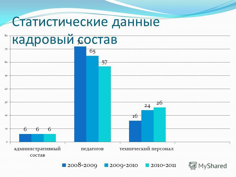 Статистические данные кадровый состав